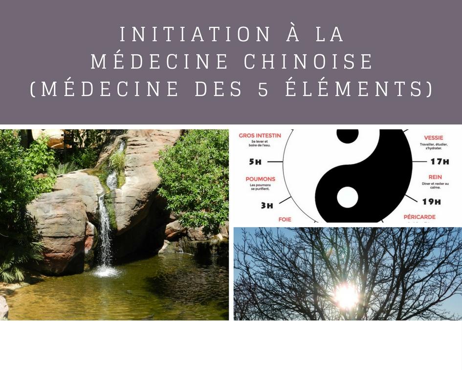 Cours initiation à la médecine chinoise