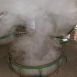 Vapeur d'eau distillerie