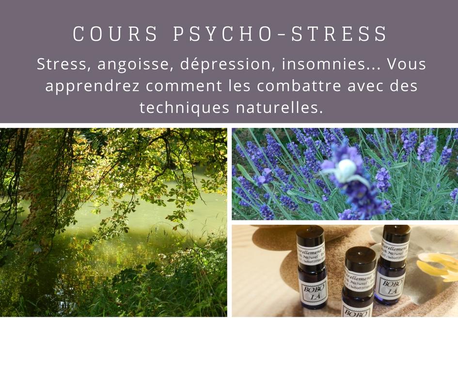 Cours pour traiter le stress de manière naturelle