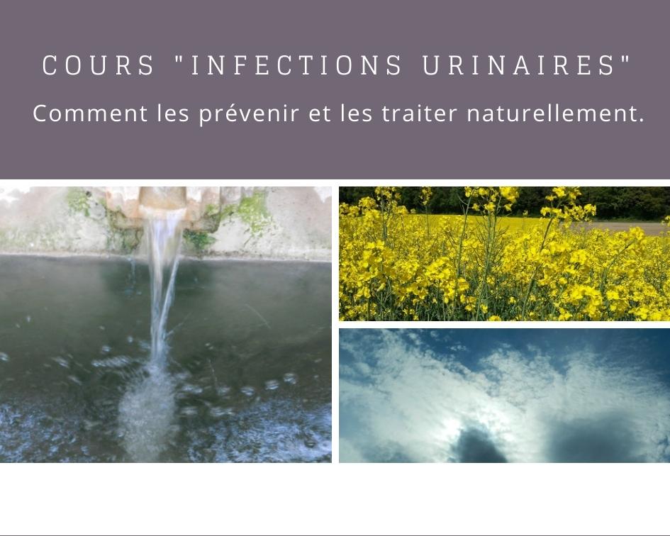 Cours infections urinaires et problèmes urinaires en naturopathie