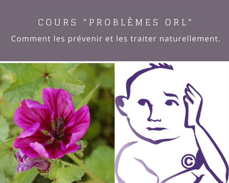 Cours problèmes ORL - Naturopathie