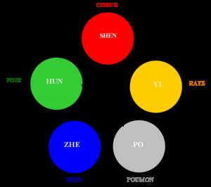 roue-mtc-web
