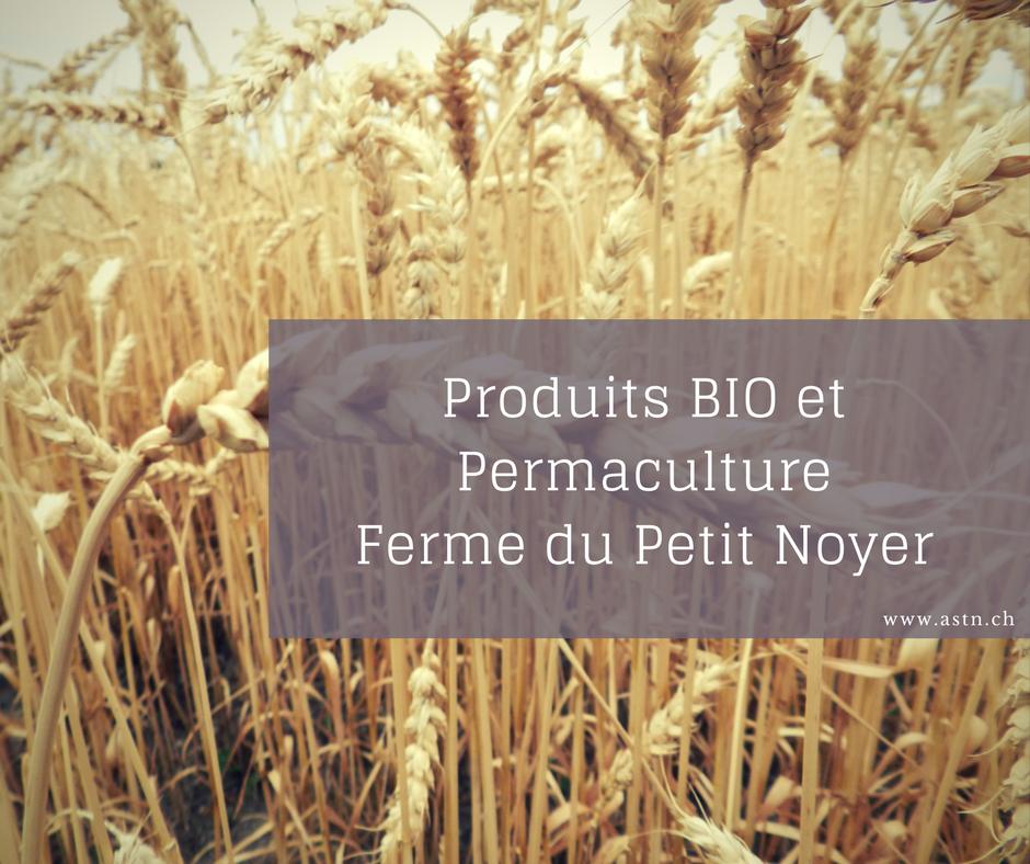 Produits BIO et permaculture Ferme Petit Noyer à Suchy