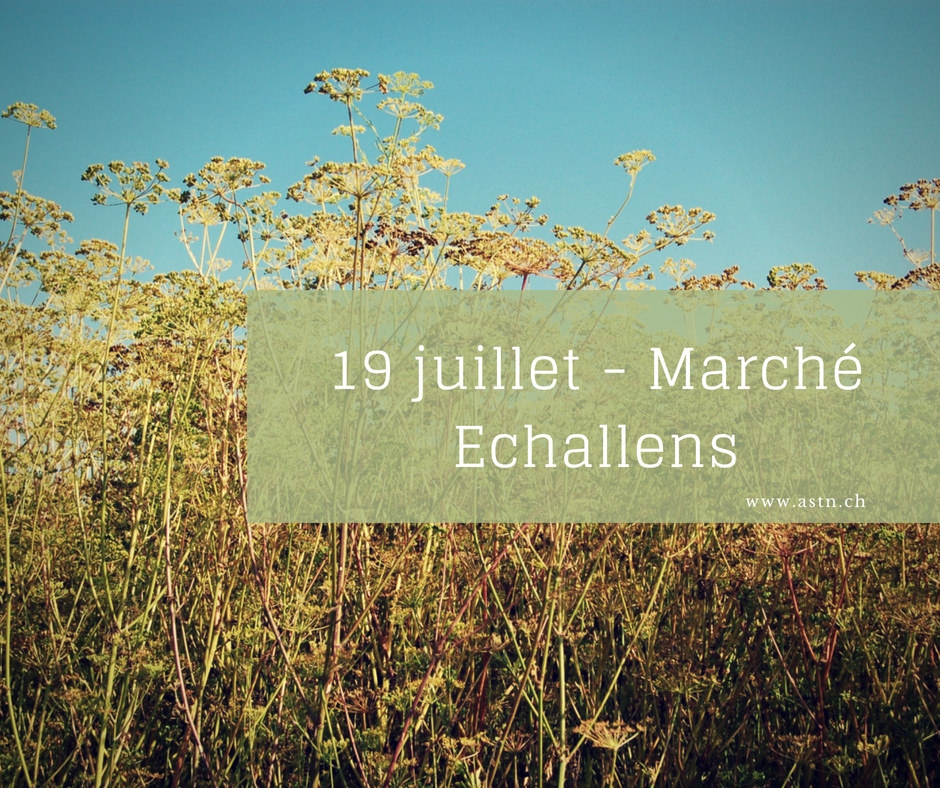 Marché Echallens 19 juillet 2018