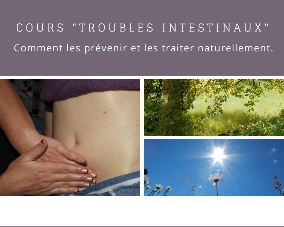 Cours troubles intestinaux en naturopathie, phytothérapie et aromathérapie