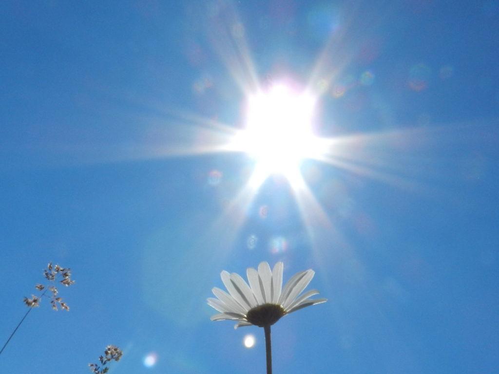 soleil été et mtc