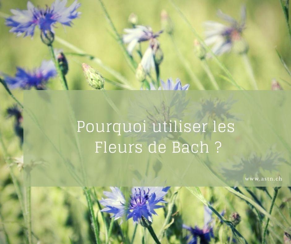 Pourquoi utiliser les fleurs de Bach ?